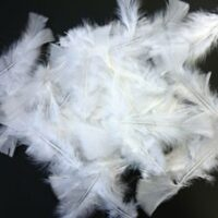FEATHERS 250GRS WHITE