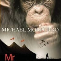 MR NOBODY S EYES